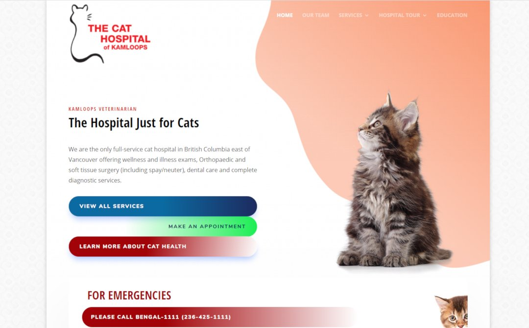 Case Study - The Cat Hospital