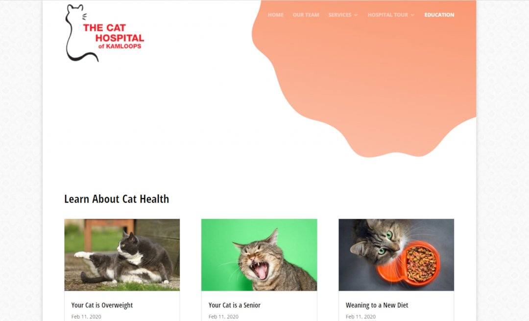 Case Study - The Cat Hospital - The Conept