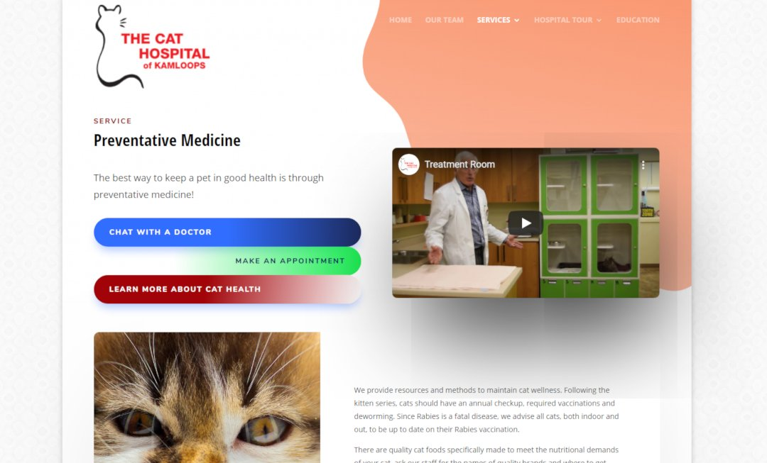 Case Study - The Cat Hospital - The Strategy