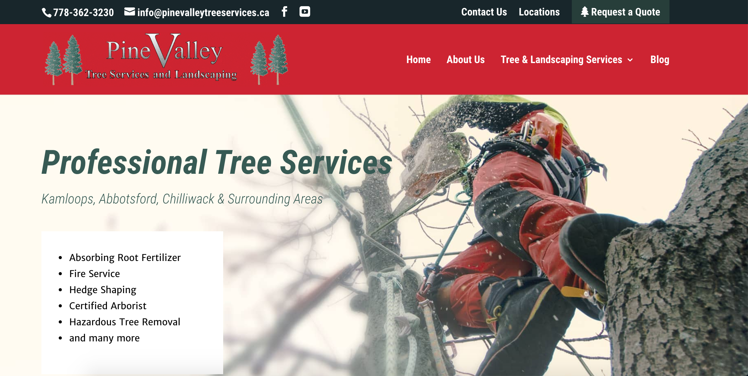 Case Study - Pinevalley Homepage